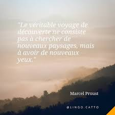 Daily French Quotes At Lingocatto Instagram Profile Picdeer