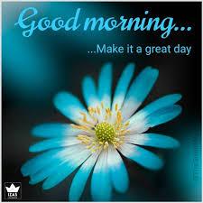 155 beautiful good morning images hd