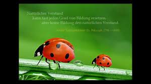 Sprüche Und Zitate Goethe Gut Deutsch Sprechen