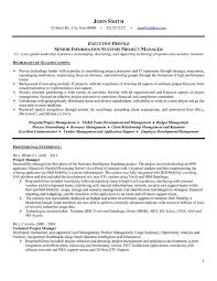 Clinical Project Manager Sample Resume Stunning A Professional Resume Template For A Senior Project Manager Want It