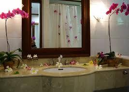 Nice Bathroom Decor Bathroom Design Small Bathrooms With Claw Foot Tub And Bath Mat