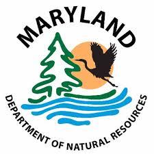 Maryland Is Closing Oyster Harvesting Season Delaware Surf