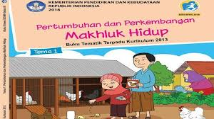 We did not find results for: Kunci Jawaban Tema 1 Kelas 3 Halaman 145 146 147 148 149 152 153 Pertumbuhan Perkembangan Tumbuhan Tribun Pontianak