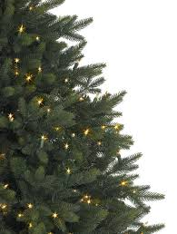 Christmas Tree Types Available At Big Wave Daveu0027sTypes Of Fir Christmas Trees