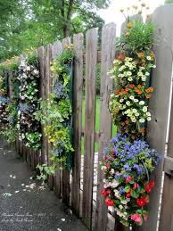 Vertical hanging flower idea. Fence PlantsFence GardenFence ...