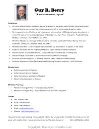 Professional Real Estate Agent Description Resume Collection