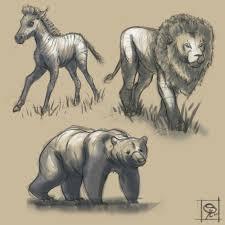 Sketches Animal Artstation Animal Sketches Godserg _art