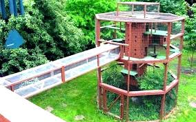outdoor cat shelter houses house plans new for multiple cats diy hou outdoor cat house