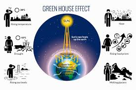 green house effect what is the green house effect