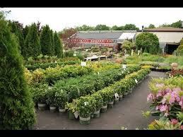 garden nurseries near me. Delighful Near Plant Nursery  Near Me Jobs And Garden Nurseries Near Me