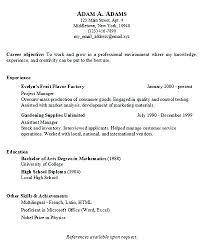 Basic Resume Examples Awesome Awesome Collection Of Example Of Basic Resume Layout Charming Basic
