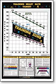 Workout Heart Rate Chart Training Heart Rate Fitness Chart F12