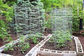 Small Picture Perfect Small Vegetable Garden Ideas Plans Nice Decoration Designs