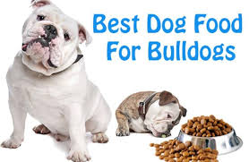 English Bulldog Weight Chart In Pounds Best Dog Food For Bulldogs What Every Dog Owner Should Know