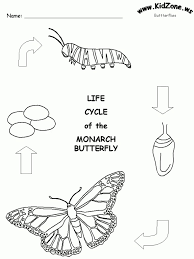 Butterfly Life Cycle Coloring Bookl Duilawyerlosangeles
