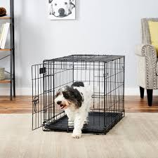 Midwest Icrate Size Breed Chart Midwest Icrate Single Door Fold Carry Dog Crate 30 In