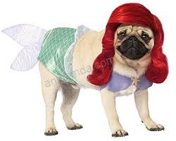 Rubies Dog Costume Size Chart Rubies Disney Princess Pet Costume Ariel Pet Supplies