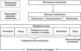 Экология и экологическая безопасность Блок схема системы мониторинга