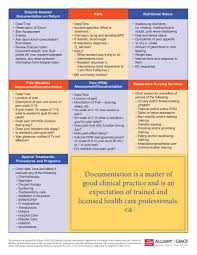 Nursing Assessment Charting Documentation In Nursing Homes