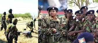 Kenya Defence Forces Salary 2019
