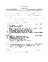 Template Senior Executive Resume Examples Professional Management