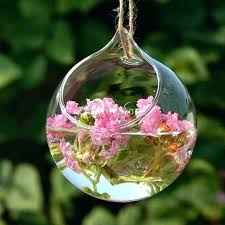 Clear Glass Balls Decorative Impressive Decorative Hanging Glass Balls Decorative Hanging Glass Balls Tree