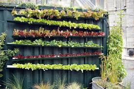 Small Picture Vertical Vegetable Garden Ideas Smart Money Simple Life
