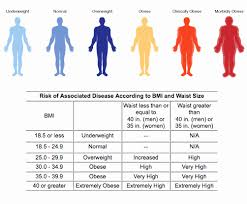Underweight Normal Overweight Obese Chart Bmi Chart Severely Obese Then Bmi Are You Normal Underweight