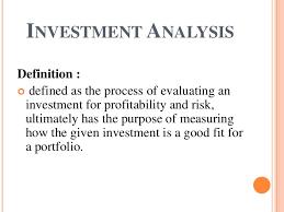 Investment Analysis - Kleo.beachfix.co