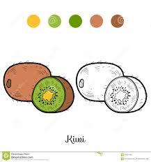 Coloriage Dessiner Fruit Kiwi L Duilawyerlosangeles Coloriage Dessiner Fruit Kiwi L