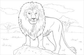 Funny jungle book coloring page for children. 8 Jungle Coloring Pages Pdf Png Free Premium Templates