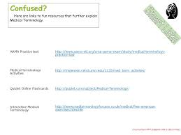 terminology review answers decoding terminology ppt