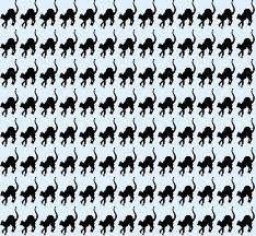 cats twitter background. Fine Cats Animals  Cats And Twitter Background S