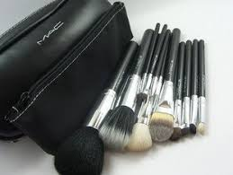 mac cosmetics professional brush set 12 piece with case