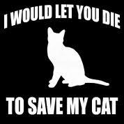 Lustige Katzen Sprüche Katze Spruch Kätzchen Männer Premium T Shirt