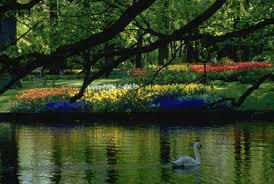 Заповедники Украины Природные заповедники Украины Национальные заповедники Украины Природные заповедники