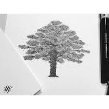 550x550 dotted line five pointed star pattern, dotted line, virtual points. T R E E Tree Dots Drawing Stippling Rotring Ink Pointilism Black Pencil Rapidograph Blackink Art Artwork R Dotted Drawings Tree Drawing Dots Art
