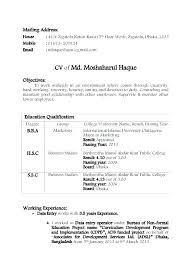 Correct Resume Format Magnificent International Standard Resume Format Pdf Format Of Standard Resume