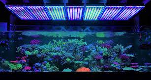 c marine aquarium led light