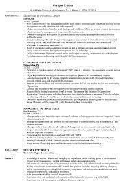 It Internal Audit Resume Samples Velvet Jobs