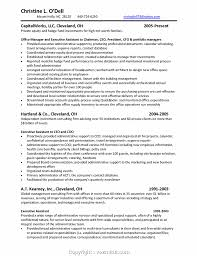 Portfolio Manager Resume Example Website Picture Gallery Hedge Fund