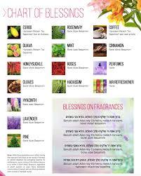 Brachot Chart The 5 Blessings On Fragrances Mk Kosher