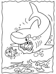 Haai Dieren Kleurplaten Kleurplaten Print Een Mooie Kleurplaat