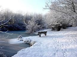 Mõned talvised pildid voore tallid