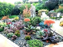 Succulent Garden Designs Delectable Succulents Garden Ideas Succulent Rock Garden Design Succulent