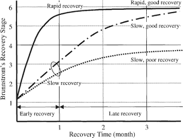 Cortical Reorganization In Patients With Subcortical