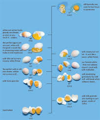 Egg Temperature Scale For Perfect Poached Eggs By