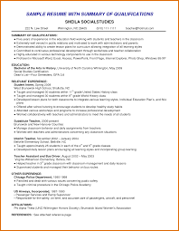 Resume Summary Examples For Students good resume summary modern bio resumes 85