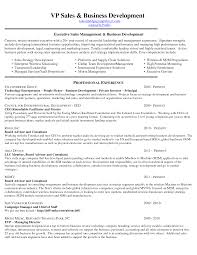 Sales Manager Cv Sample For Students Business Plan Template How To
