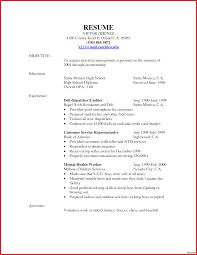 Resume For Deli Clerk Resume Online Builder